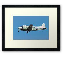 De Havilland DH104 Devon C.2 WB534/DB Framed Print
