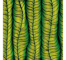 Green illusion Photographic Print