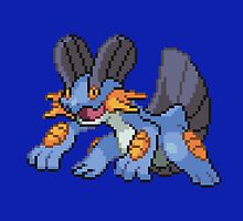 Swampert by GreenTheRival