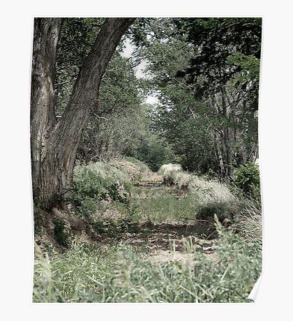 green lands Poster