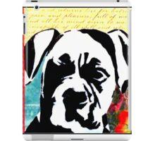 Graffiti Boxer iPad Case/Skin