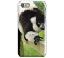 Black and white lemur iPhone Case/Skin