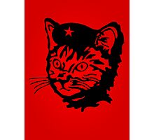 Che Cat Photographic Print
