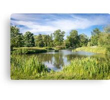 Rural Lake Canvas Print
