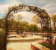 Conservatory Garden by Jessica Jenney