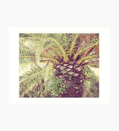 Florida Palm Art Print