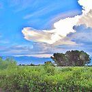 Storm Cloud by marilyn diaz