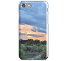 Desert Sundown iPhone Case/Skin
