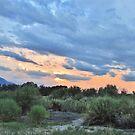 Desert Sundown by marilyn diaz