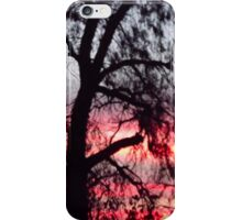 Sun setting behind desolate trees iPhone Case/Skin