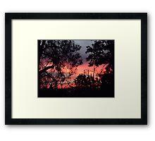 Sunset behind desolate trees 2 Framed Print