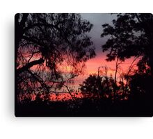 Sunset behind desolate trees 2 Canvas Print