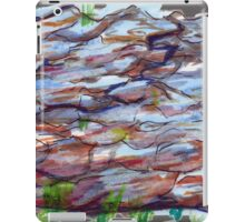 Nova Scotia Rocks 1 iPad Case/Skin
