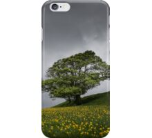 Lone tree on the Kent downs.  iPhone Case/Skin