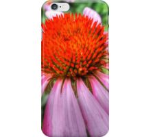 Coneflower Macro iPhone Case/Skin