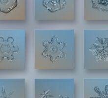 Snowflake collage - Season 2013 bright crystals Sticker