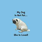 My Dog is Not Fat! She is Loved by Patricia Barmatz