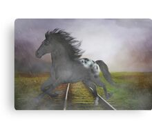 Horse in the Rain Canvas Print