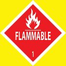 Flammable by Rich Anderson