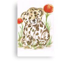 Young  Cub  Leopard Canvas Print