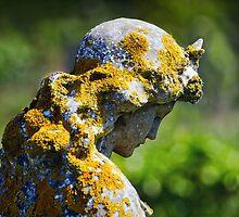 Weathered Angel by Susie Peek