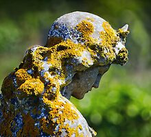 Weathered Angel by Susie Peek