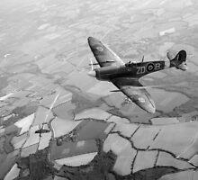 Spitfire victory black and white version by Gary Eason + Flight Artworks
