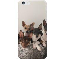 fur family  iPhone Case/Skin