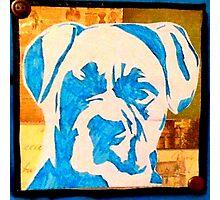 Blue Boxer Photographic Print
