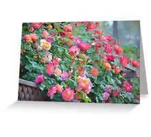 Rose 360 Greeting Card