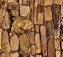 Rocking by tvlgoddess