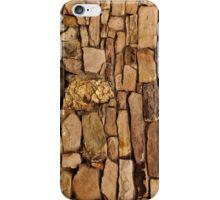 Rocking iPhone Case/Skin
