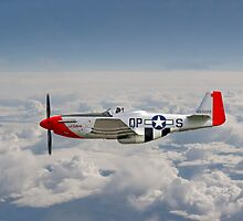 P51 Mustang Gallery - No4 by Pat Speirs