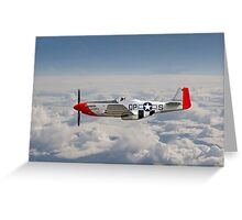 P51 Mustang Gallery - No4 Greeting Card