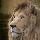 White Lion by Chris Cobern