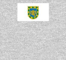Flag of Mexico City  Unisex T-Shirt