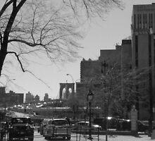 Brooklyn Bridge by Chris Moll