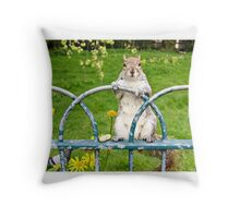 Have you seen my nuts? Throw Pillow
