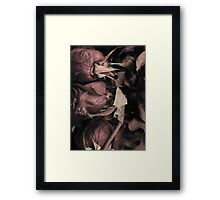 Soft Colored Roses Framed Print