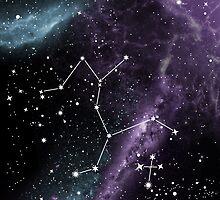 Centaurus & Crux (Southern Cross) by Rachael Thomas