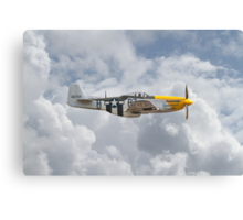 P51 Mustang Gallery - No5 Canvas Print