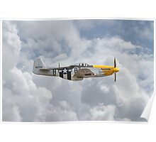 P51 Mustang Gallery - No5 Poster
