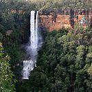 Fitzroy Falls by garts