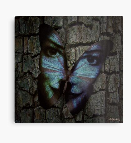 Am I A Butterfly Who Dreams About Being A Human? Metal Print