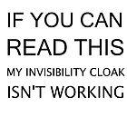 INVISIBILITY CLOAK by EllishiaFrancis