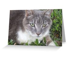 Trixy - In Loving Memory Greeting Card
