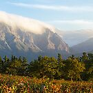 Franschoek Valley by Alan Robert Cooke