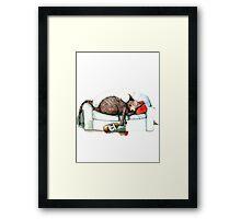 Cat nip nap Framed Print