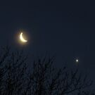 Moon and Venus by virginian