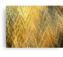 Sun Filaments Canvas Print